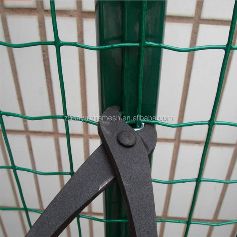 PE/PVC Coated 6ft Holland Welded Wire Fence 4x4 3x3 2x2 mesh with 2.1M fence post (Manufacturer,High quality,Low price)