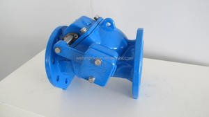 Ductile cast iron swing check valve