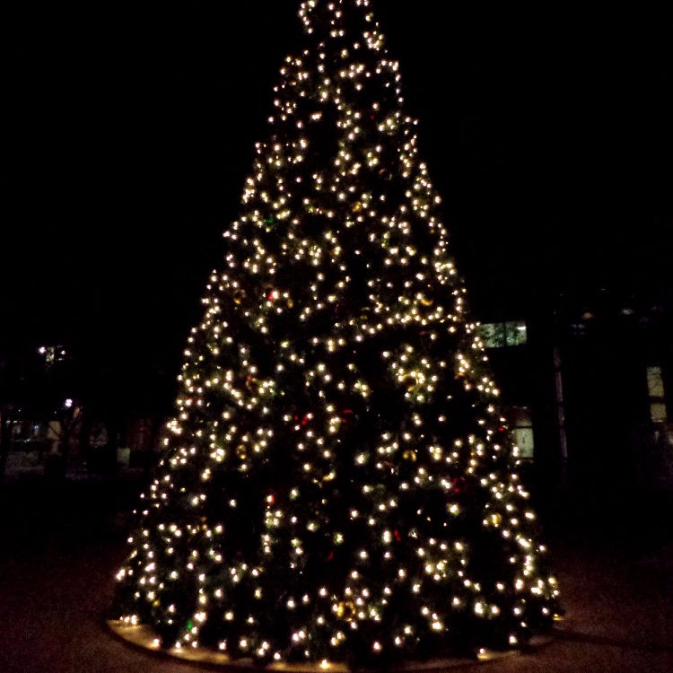 Wire Outdoor Led Christmas tree 15 meter
