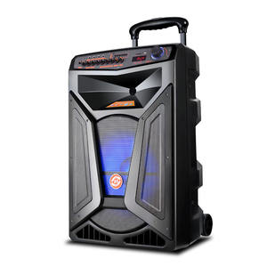 Supply All kinds Of 18 Inch Outdoor Karaoke Portable Trolley Speaker With Subwoofer