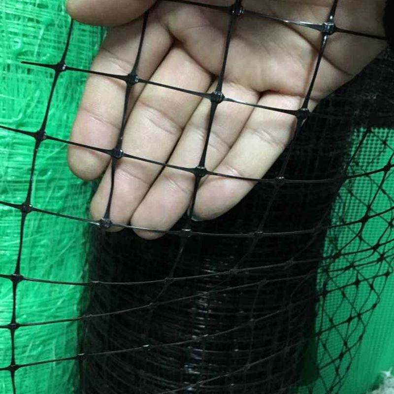 Plastic chicken poultry farm fence chicken wire netting protection fence
