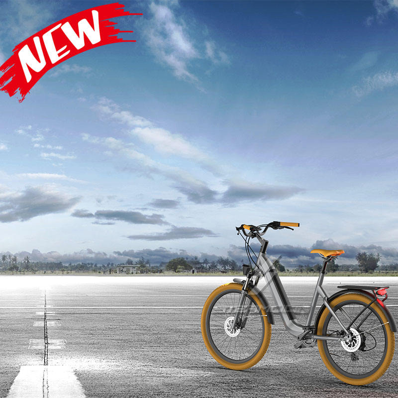 Cheap price electric bicycle electric bike ebike 250W/350W electric bicycle china