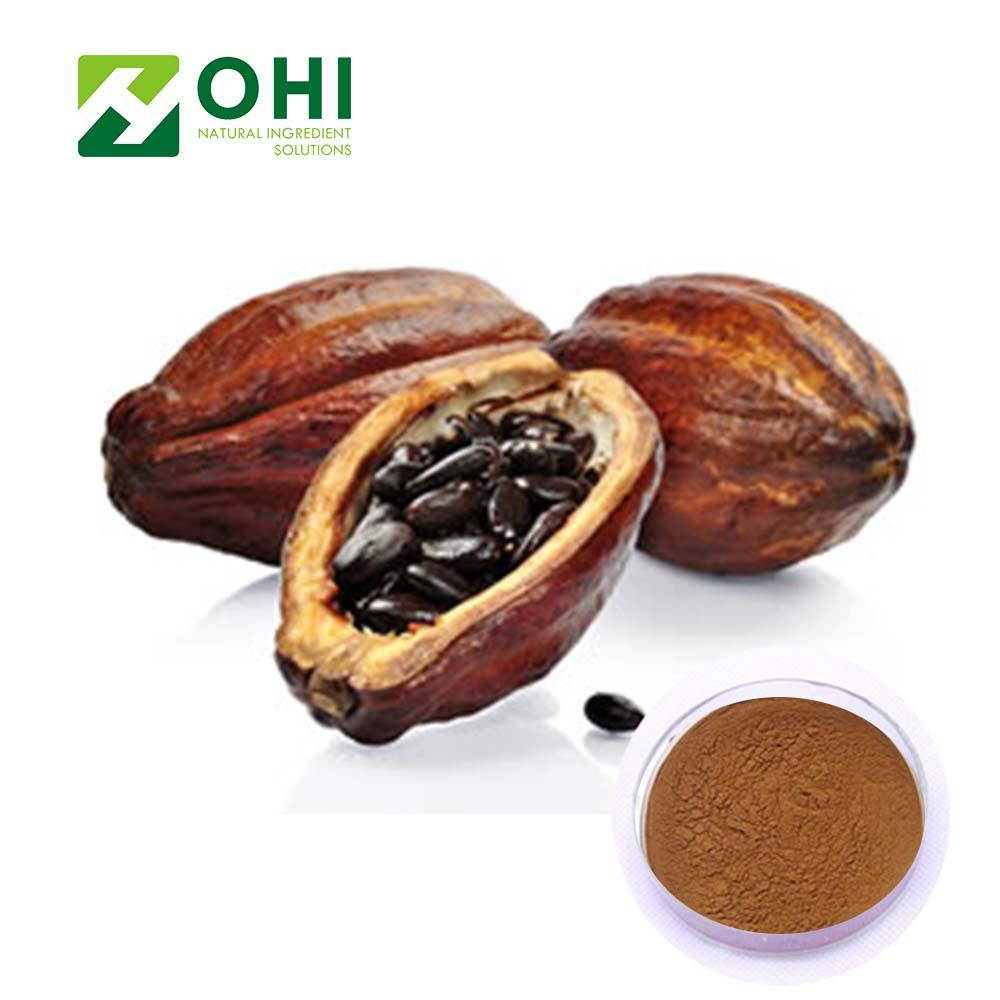 Theobromine 20% Chiết Xuất Từ Hạt Ca Cao Bột Ca Cao
