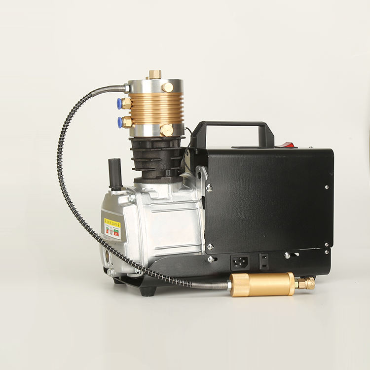 Portable mini electric pcp 300bar high pressure air compressor