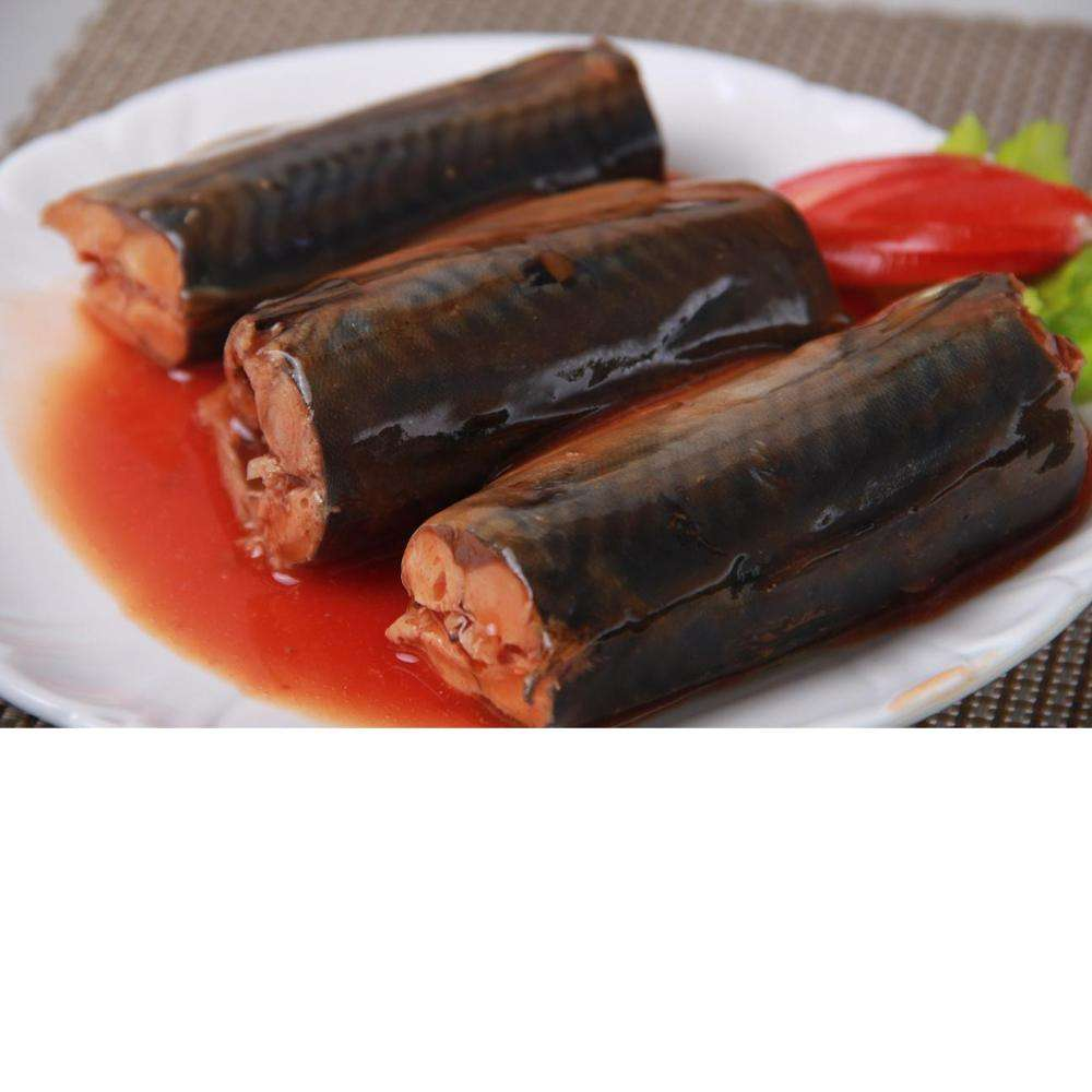 Canned Mackerel In Brine From Chile