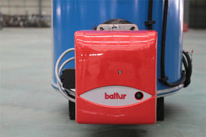 Small Vertical Gas Fired Hot Water Boiler for hotel