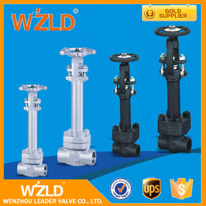 WZLD Normal Temperature 200 Wog Flanged End Forged Steel Cryogenic Gate Valve