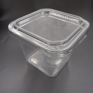 take away PP PET plastic fruit box disposable food containers
