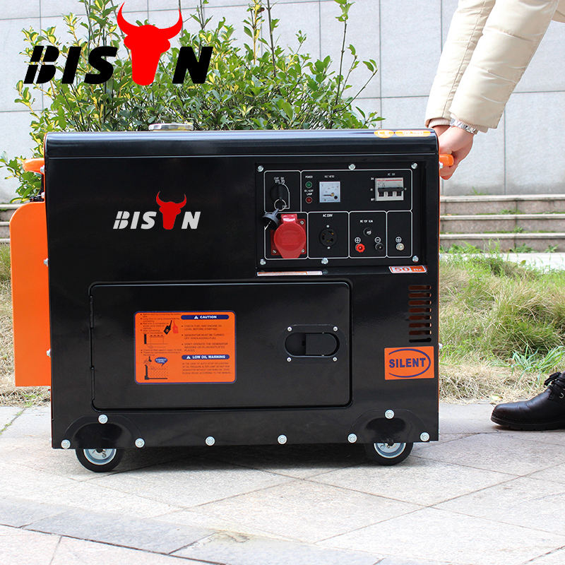 BISON(CHINA) germany standard king power electric diesel generator 220v