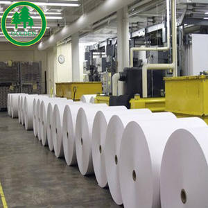 Food grade top quality PE coated cup stock paper in roll&sheet