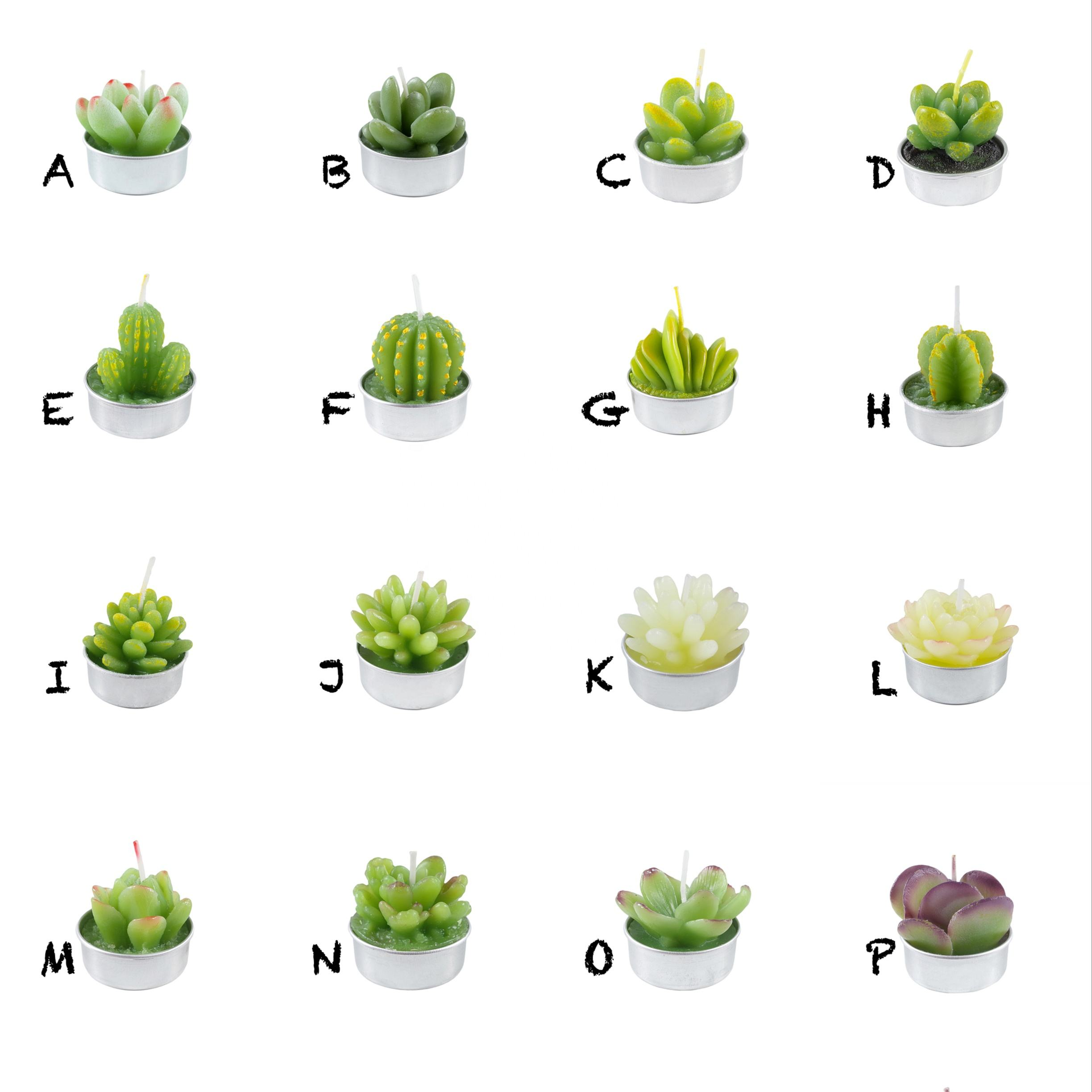 Cactus Tealight Candles, Handmade Delicate Succulent Scented Cactus Candles,Mini Tealight Candles Succulent plants candle