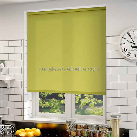 Rich coloured solid roller blind with transparent fabric home blinds from china
