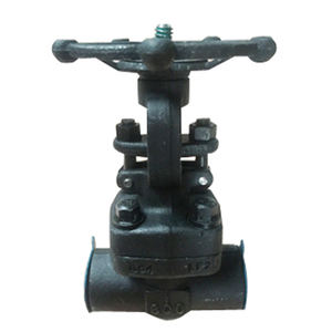 API 600 Solid Wedge O&Y gate valve LF2