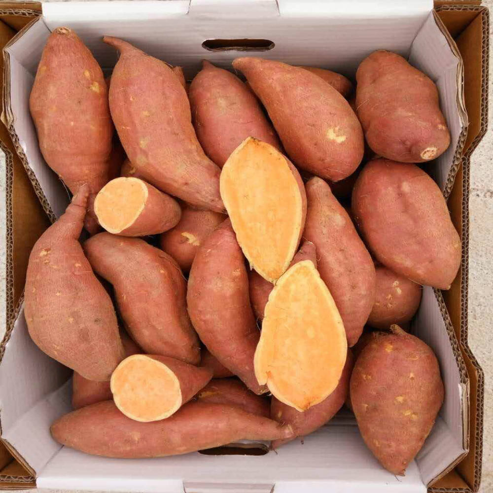 Patate douce à chair Orange <span class=keywords><strong>prix</strong></span> le plus bas