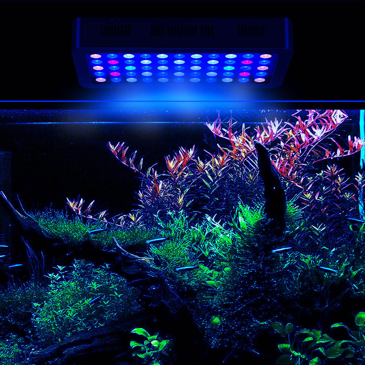 Best Seller 165 W OEM Dimmable Hydroponc Cina LED Akuarium Lampu Terumbu Karang Lampu LED Aquarium
