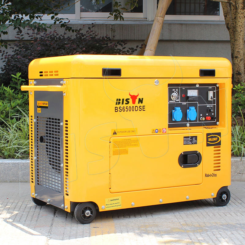 BISON(CHINA) BS7500DSEC 6KW 6KVA Copper Wire New Type Actual Output Power Strong Frame 220V King Max Diesel Generators