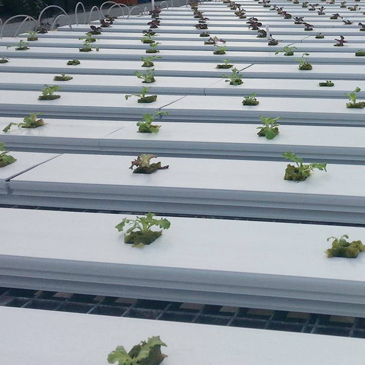 Food grade PVC square channel for hydroponics planting commercial greenhouses