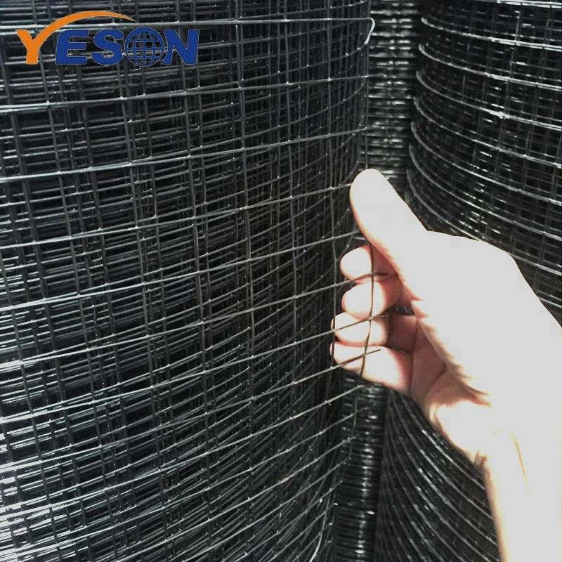Anping Hot sale 1x2 8 rabbit PVC coated black welded wire fence mesh panel