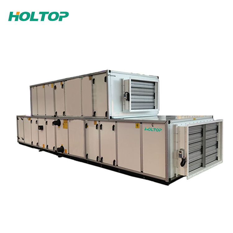 Farming factory AHU Dx coil cooling/heating mushroom air handling unit with outdoor unit