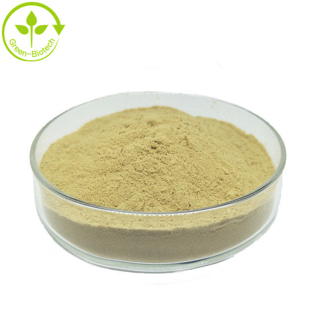 Best Quality Camellia Sinensis Seed Extract Powder Organic
