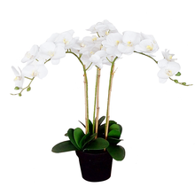 Artificial butterfly orchid flower for home decor 5212