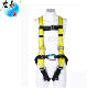 EN fall protection baby safety walking harness