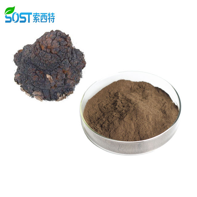 SOST Biotech Factory Supply Organic Siberian Chaga Extract Powder