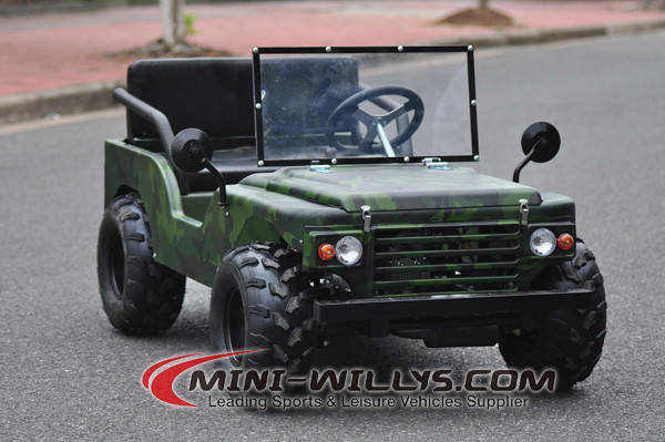 CE Ha Approvato 125CC <span class=keywords><strong>Mini</strong></span> ATV Willys
