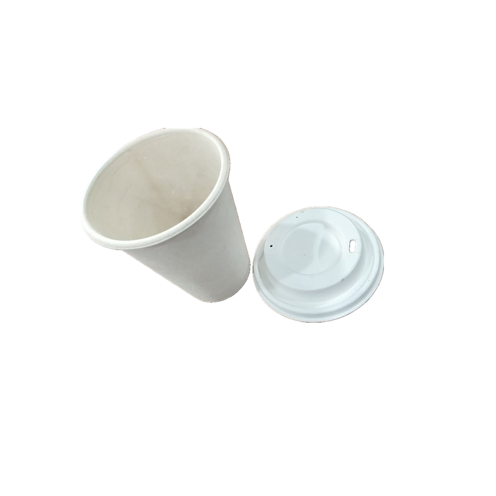 wholesales biodegradable and disposable sugarcane or bamboo cup for coffee shop