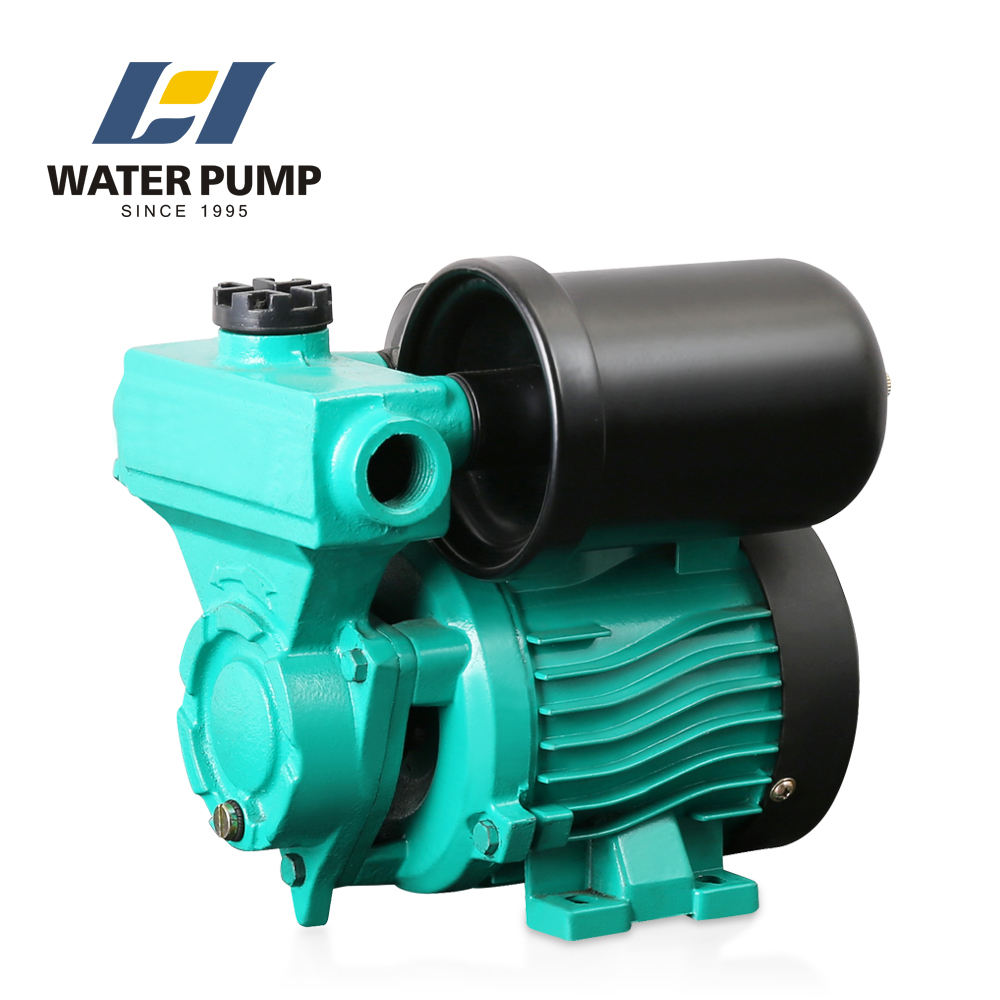 china best price 120w 20m head auto electric start water pump with tank