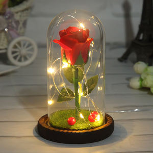 Factory Direct Beauty and The Beast Rose Enchanted Red Real Rose Cheap Wholesale Led Light with Fallen Petals in a Glass Dome