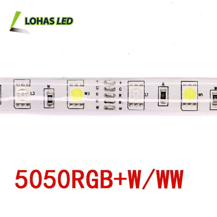 12V/24V Waterproof Flexible Strip Lights 60 leds/Meter SMD 5050 LED Strip Light -Not Contain the Power Supply