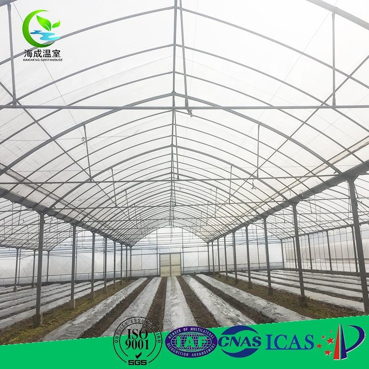 Greenhouse Construction Most Affordable Aquaponic System Greenhouse Construction Cost