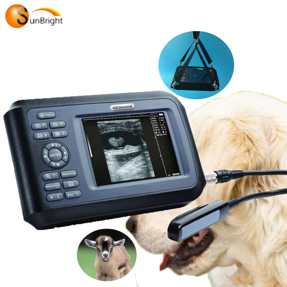 Handheld vet portable digital 5 inches ultrasound machine veterinary ultrasound SUN-808F
