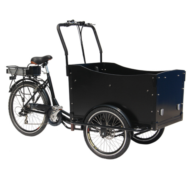 Classic 3 Wheels Electric Customized OEM Pedal Carrying Children Family Tricycle Adult Cargo Bike Color