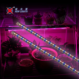 Nieuwe Product T8 Glas 5ft 20 w SMD2835 Clear Tube LED Licht Groeien
