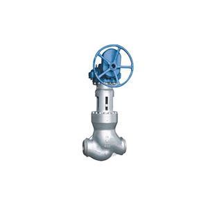 Factory Customization Safe and Reliable Stable and Durable High Temperature and High Pressure Power Station Electric Globe Valve