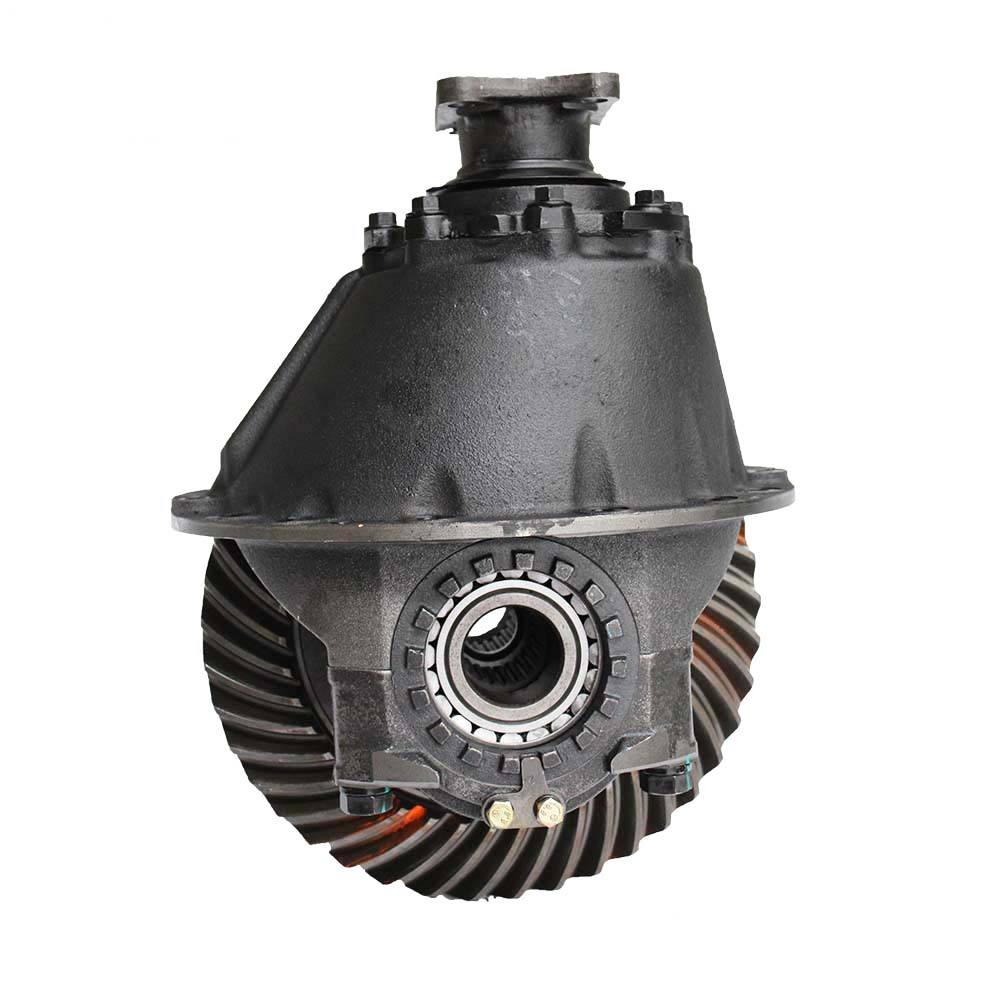 Buggy differential gear for truck