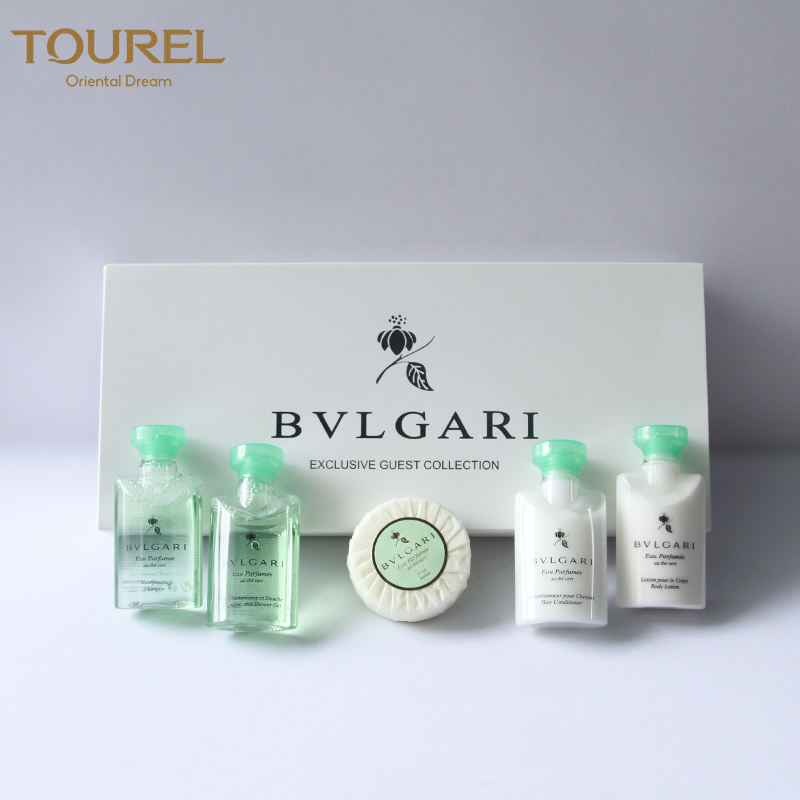 Wholesale Luxury Cheap 5 Star Plastic Shower Gel Cosmetic Bottle Bathroom Disposable Hotel Amenities