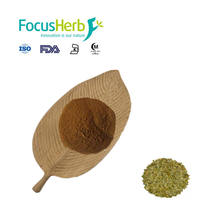 ISO  Yerba Mate Extract Powder With Best Price