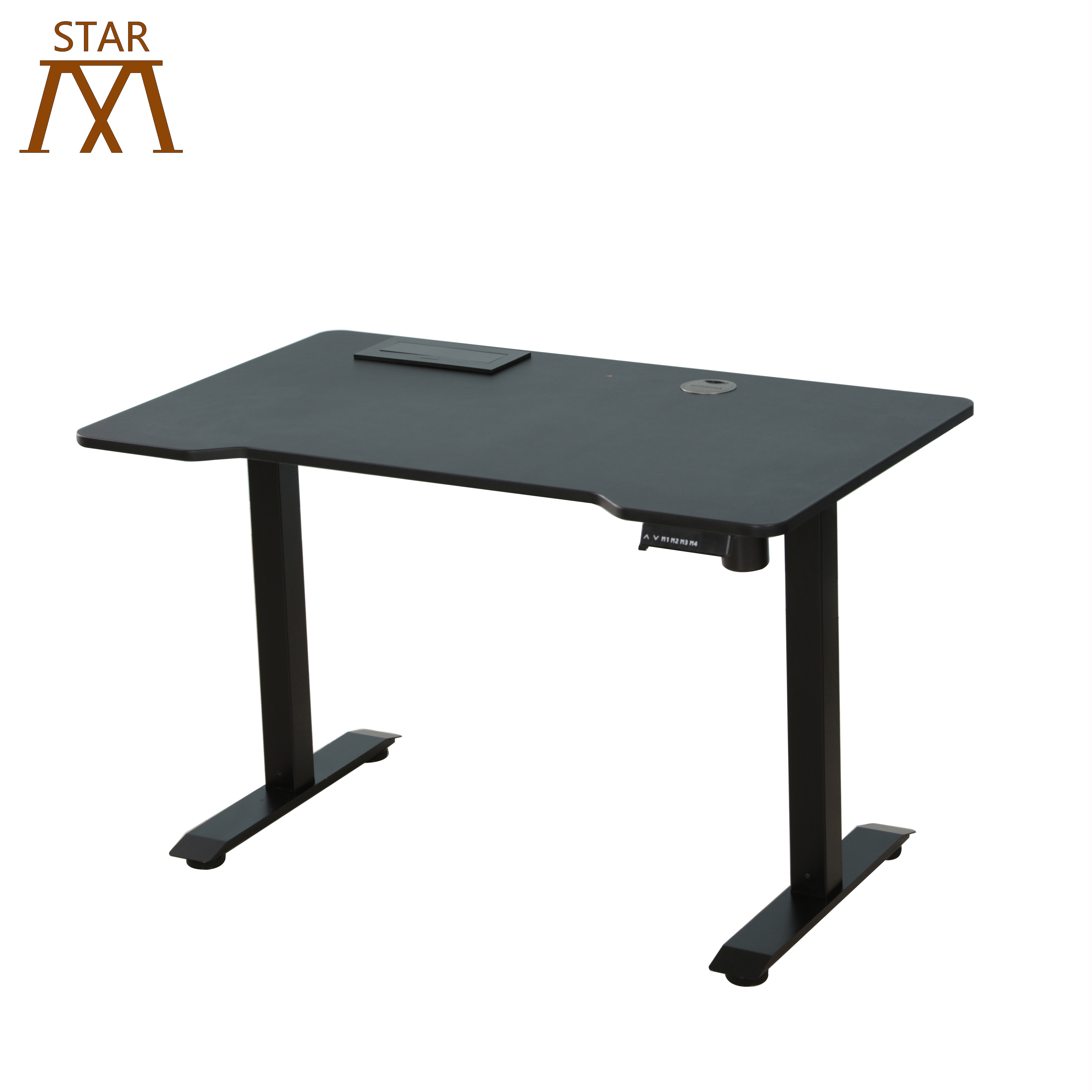 Germany Intelligent Electric Height Adjustable Standing Desk Two Segments Lifting Column