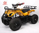 Hot Selling Cheap Electric ATV