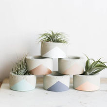 Small Minimalist Succulent Concrete Planter Pot