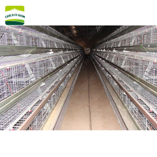 Poultry farming business plan battery cages laying hens sell in algeria a type hot dip galvanized chicken cage
