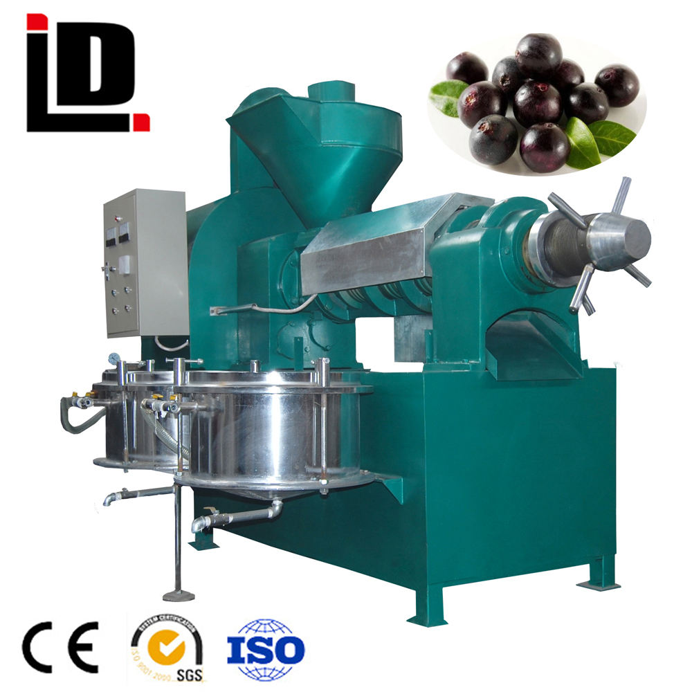 6YL-165 cold and hot screw palm oil seed press machine