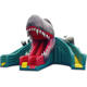 Inflatable Best Selling Inflatable Bouncer Combo / Inflatable Castle Combo / Inflatable Dinosaur