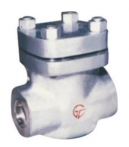 High Pressure Large Diamerer Swing Check Valve