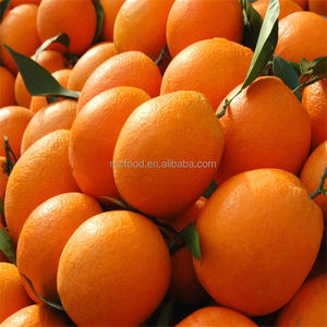 Gannan Navel-Orange