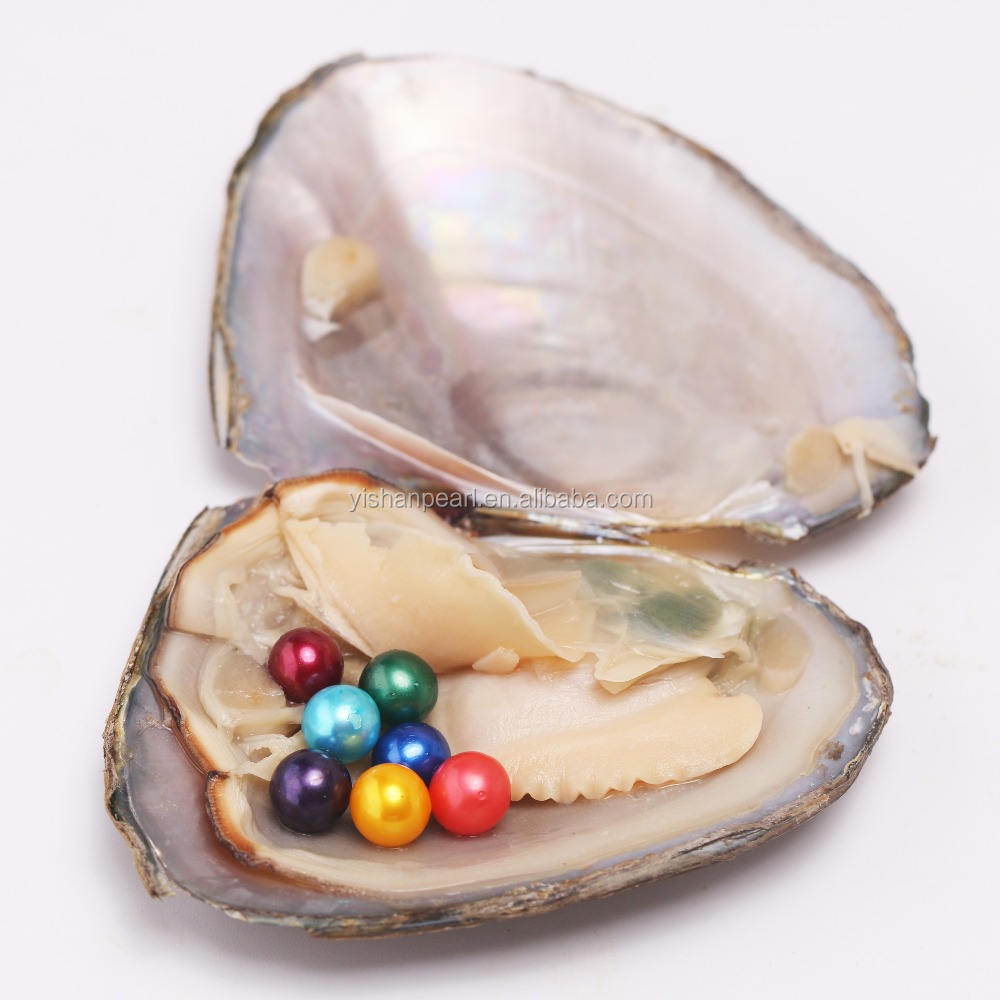 Wholesale 7 Grains 6-7 mm Rainbow Color Pearls in Freshwater Oyster Vacuum-Packed Fancy Gifts for Girls