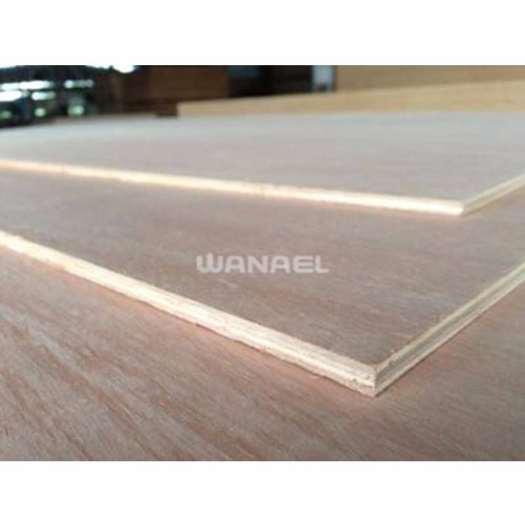 Wanael Commercial Birch Plywood Sheet